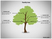 Family Tree Animated ppt templates