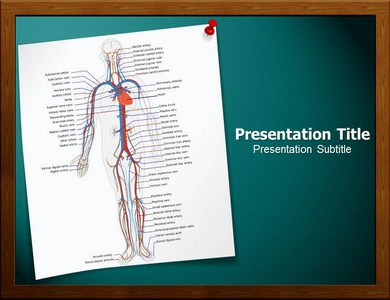 Circulatory System Powerpoint Templates