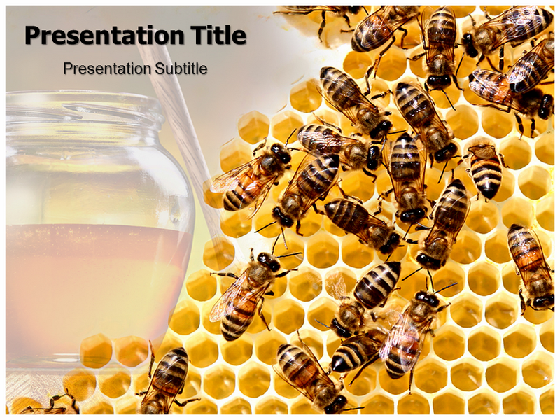 Honeycomb Powerpoint Templates