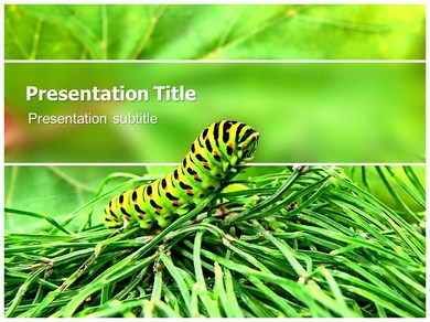 Caterpillar Powerpoint Templates