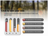 Falling Autumn Leaves powerpoint themeprofessional