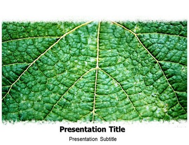 Environment Leaf  Powerpoint Templates