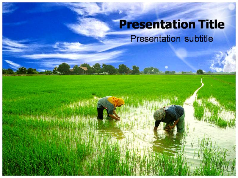 Farming husbandary powerpoint ppt templates farming powerpoint download toneelgroepblik Images