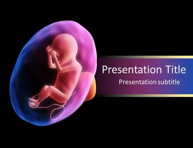 Fetus Development Powerpoint Templates