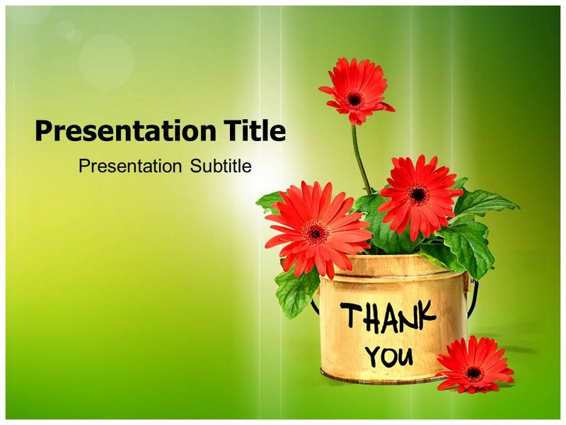 Thank You Cards Powerpoint Template Thank You Ppt Backgrounds