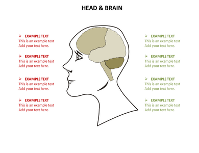 Head Neck Powerpoint Templates