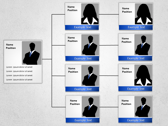 Organization Hierarchy slides for powerpoint