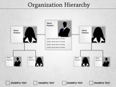 Organization Hierarchy powerPoint backgrounds