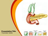 Pancreatitis - Powerpoint Templates
