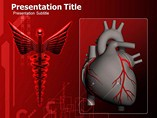 Human Heart PowerPoint Theme