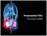 Nephrology Powerpoint
