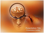 Brain Model PowerPoint Theme