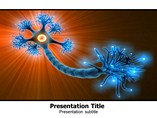 Neuron Anatomy PowerPoint Background