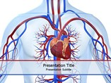 Cardiovascular Disease PowerPoint Background