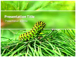 caterpillar powerpoint