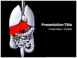Free Stomach Powerpoint Template