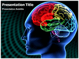 Free PPT Templates Download Brain