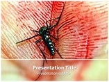 Dengue Powerpoint Template