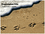 Animal Footprint Powerpoint Template