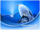 Bird and Sky Powerpoint Template