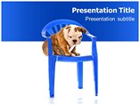 Dog Care Powerpoint Template