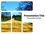 Yellow Brick Road PPT Templates