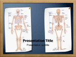 Skeletal System Anatomy Powerpoint Template