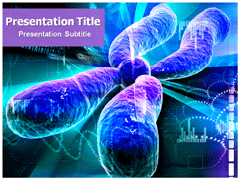 Download chromosome powerpoint template medical ppt templates by studies have been done to know about chromosomes by observing during the cell division toneelgroepblik