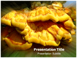 Fungus Parasite PPT Template