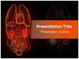 Nephrology Refrence Powerpoint Template