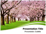 Cherry Blossom PowerPoint Templates