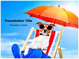 Animal powerpoint templates-Pet Luxury