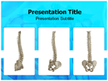 Spinal PowerPoint Backgrounds
