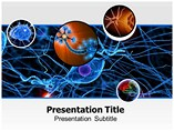 Neurology PowerPoint Templates