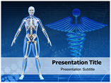 Human Skeleton - Powerpoint