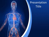 Medical powerpoint background - Vascular System