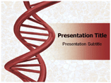 DNA Strands  PowerPoint Template