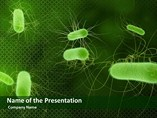 Micro organism Bacteria PPT Templates Download