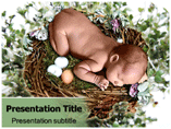baby birth Powerpoint Templates