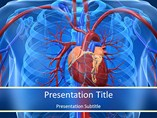 Cardiovascular System Facts PowerPoint Slide