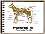 Dog anatomy PowerPoint Templates