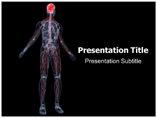 Nervous System Powerpoint Templates