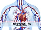 Cardiovascular Disorders PowerPoint Slides
