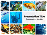 Underwater world PowerPoint Templates