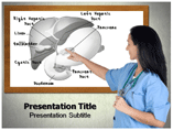 Liver Anatomy Powerpoint Templates