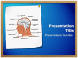 Glioma Powerpoint Templates