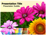 Flowers Day PowerPoint Templates