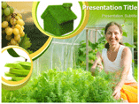 Green House Plant PowerPoint Templates