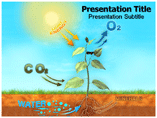 photosynthesis PowerPoint Templates