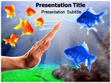 Discrimination Laws PowerPoint Templates